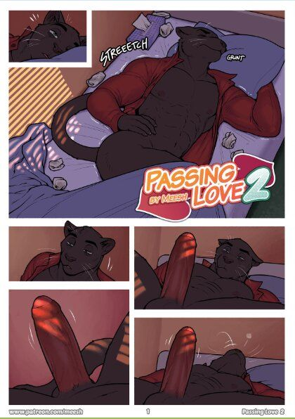 Meesh - Passing Love 2